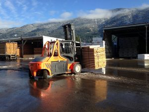 Carer Electric Forklifts Work in All Weather Conditions